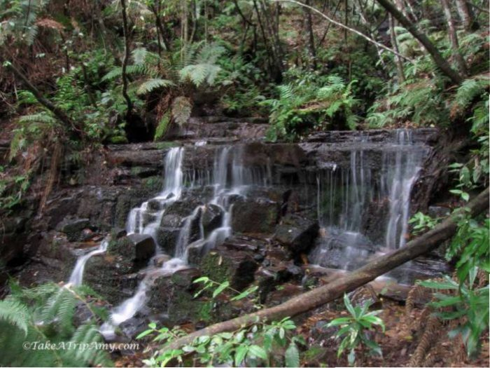 Marguerite Cascades, Blue Mountains National Park, NSW, Australia