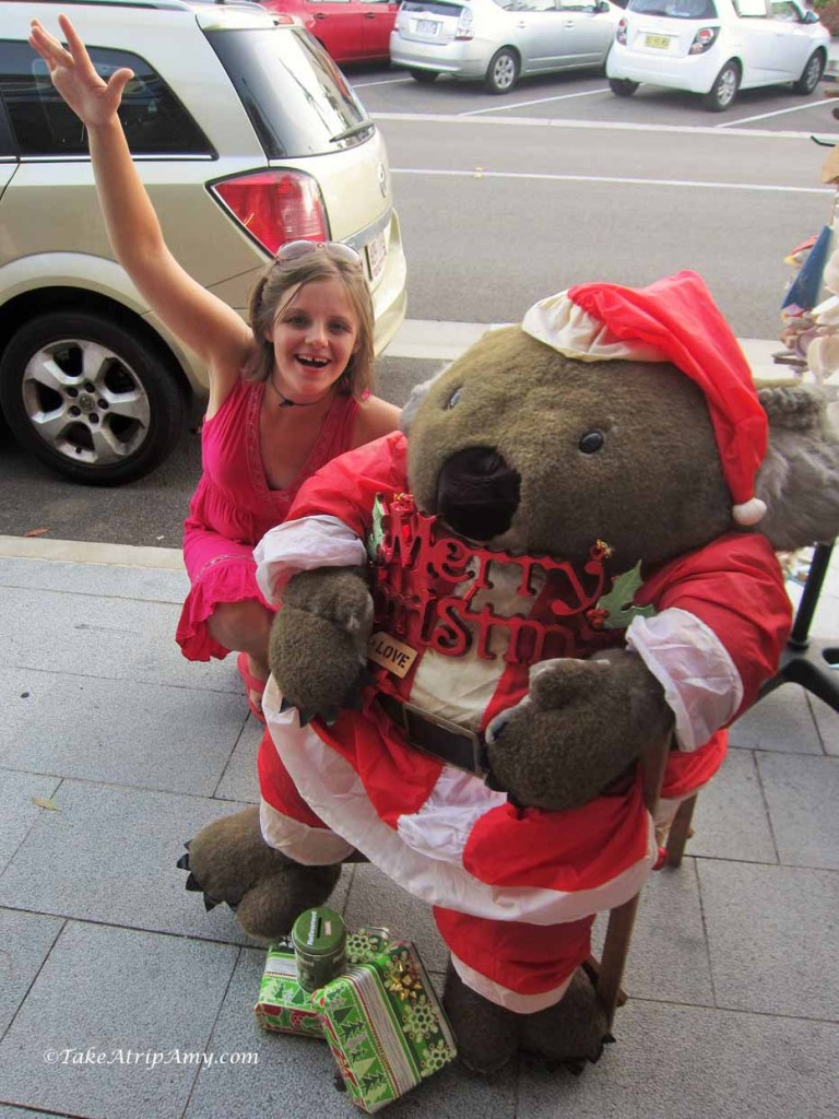 Festive Wombat at Airlie Beach, QLD, Australia