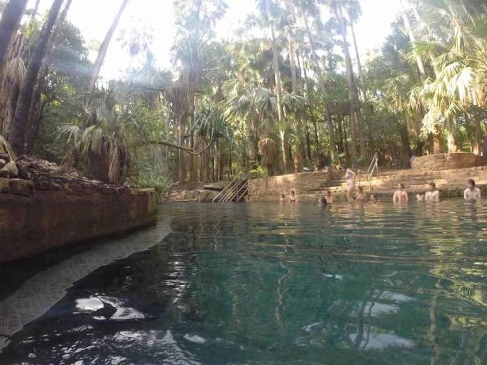 Mataranka Thermal Pools, Northern Territory, Australia