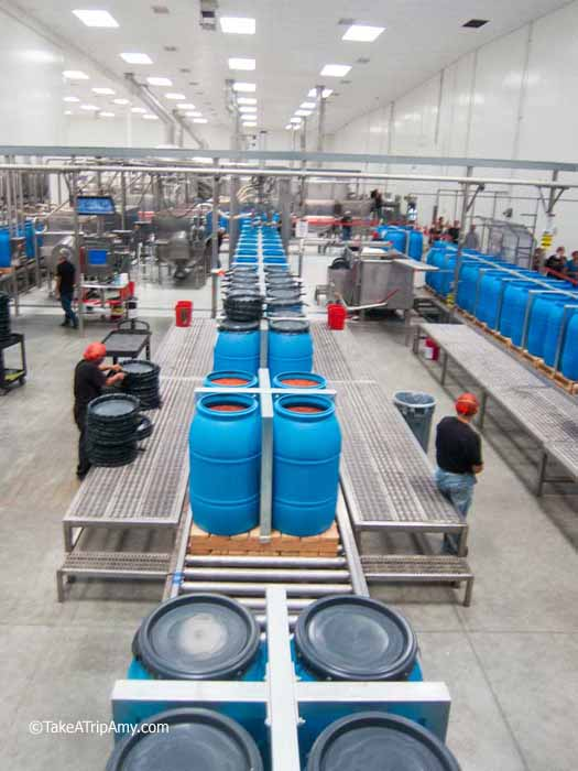 Blue Barrels full of chili base are stored at the factory until such a time they are ready to be transformed into one of three final products.